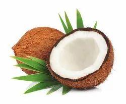 Fresh Indian Semi Husked Coconut