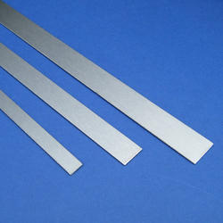 Stainless Steel Strips