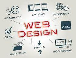 Web Application Development / Software Development