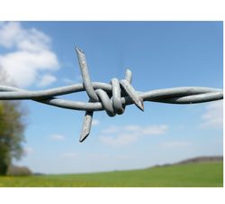 Stainless Steel Silver Barbed Wire