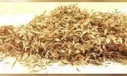 Palmarosa Seeds