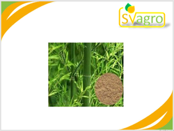SV Agrofood Bamboo Extract, Packaging Type: Drum