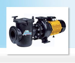 4-10 HP Swimming Pool Commercial Pumps