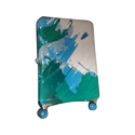 Skybags Abs Plastic Skybag Trolley Bag
