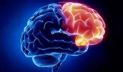 Neurology Sarjari Treatment Service