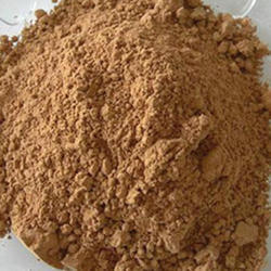 Papaya Fruit Extract Powder