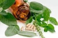 Ayurveda Pharma Franchise in Jabalpur
