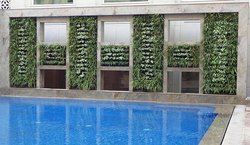 Best Vertical Garden Structure for swimming pool