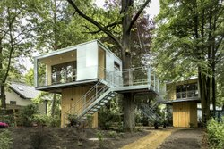 How To Build A Tree House India