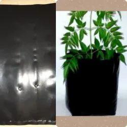 LDPE Black Nursery Poly Bag, Capacity: Size according to order