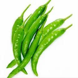 Green Chilli in Vijayawada - Latest Price & Mandi Rates from Dealers