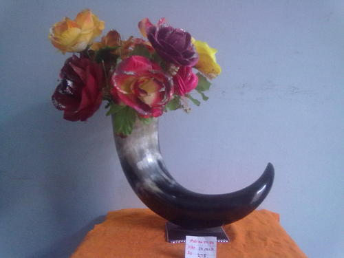 Flower Pot Of Horn