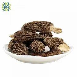Himachal Pradesh Mushroom Gucci, Packaging Type: Plastic Bag