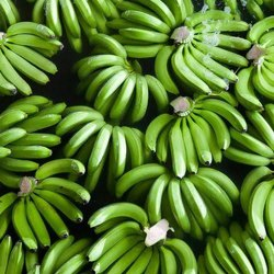 Pan India Maharashtra Green Banana, Carton
