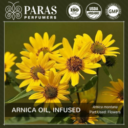 Paras Perfumers Arnica Oil