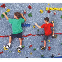 School Kids Climbing Wall