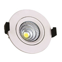 1 W LED Spot Light