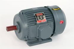 2 HP Three Phase Electric Motor