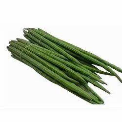 Fresh Green Drumstick