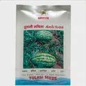 Tulasi Ruchita (twh - 414 ) Seed