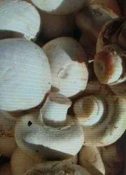 Fresh Butter Mushroom