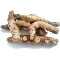 White Turmeric Extract