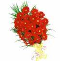 25 Red Gerbera