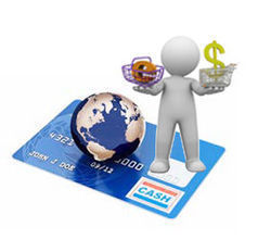 Internet Payment Gateway Software for Financial Transactions