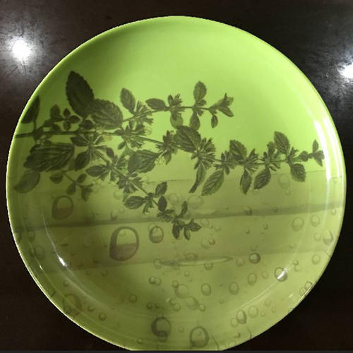 Green Color Printed Melamine Plate Size 7 Inch Also Available In 5-13 & Green Color Printed Melamine Plate Size: 7 Inch Also Available In 5 ...