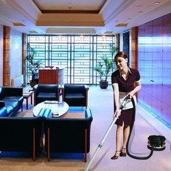 8 Hours Office Housekeeping Services