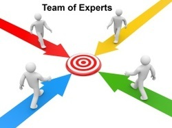 Team of Experts