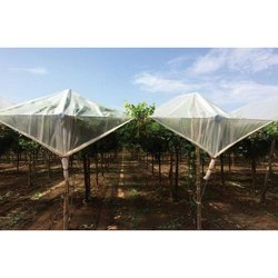 GreenPro Orchard Cover
