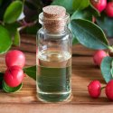 Natural Essential Wintergreen Oils