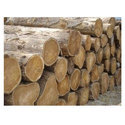 Sagwan Wood Logs For Furniture, Diameter: 1.8 To 4.8 Cm