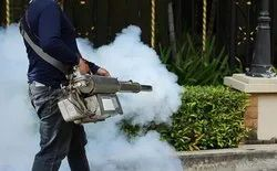 Fumigation treatment Service