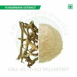Punarnava Extract (Boerhavia Diffusa, Red Spiderling, Spreading Hogweed, Tarvine)