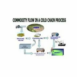 Cold Chain Project Report Consultancy