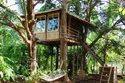 Tree House Construction Cost Thiruvananthapuram - Ernakulam - Kozhikode - Kollam - Kerala