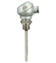 Screw-in RTD Temperature Probe with Form B Terminal Head