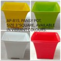 Pansy Square Pot 3 Inch