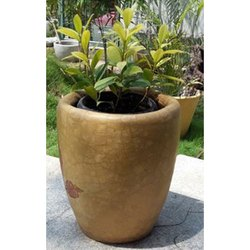 Flower Pots in Coimbatore, Tamil Nadu | Get Latest Price from