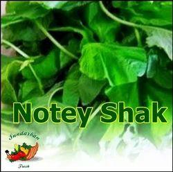 Fresh Notey Shak