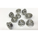 Stainless Steel Flange Nut