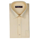 Premium Collar Neck Formal Shirt