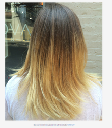 Balayage Hair Color Technique and Ombre Hair Color Technique ...