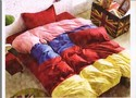 Colourful Rosepetal Bed Sheets