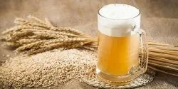 Gluten Free Beer Project Report Consultancy