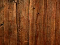 Accord Mango Wood Flooring, 21 mm