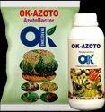 Azotobacteria