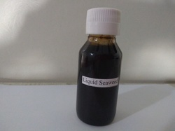 Seaweed Extracts Liquid